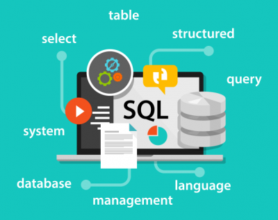 SharePoint Development Databases