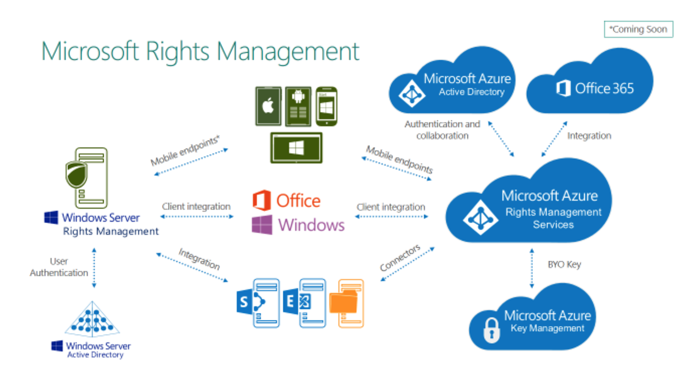 microsoft-rights-management